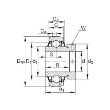 المحامل G1106-KRR-B-AS2/V INA